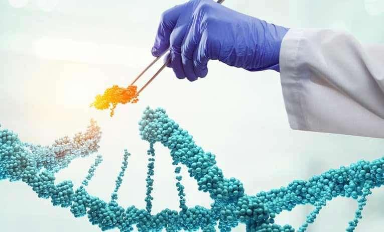 CRISPR-Cas9 Nedir? CRISPR-Cas9 Genetik Düzenleme Neleri Değiştirir?